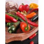 Paprika & Chili Jungpflanzen